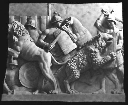 Gladiatorial Combat: The Arena